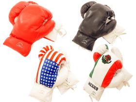 4oz Boxing Gloves in 4 Different Styles
